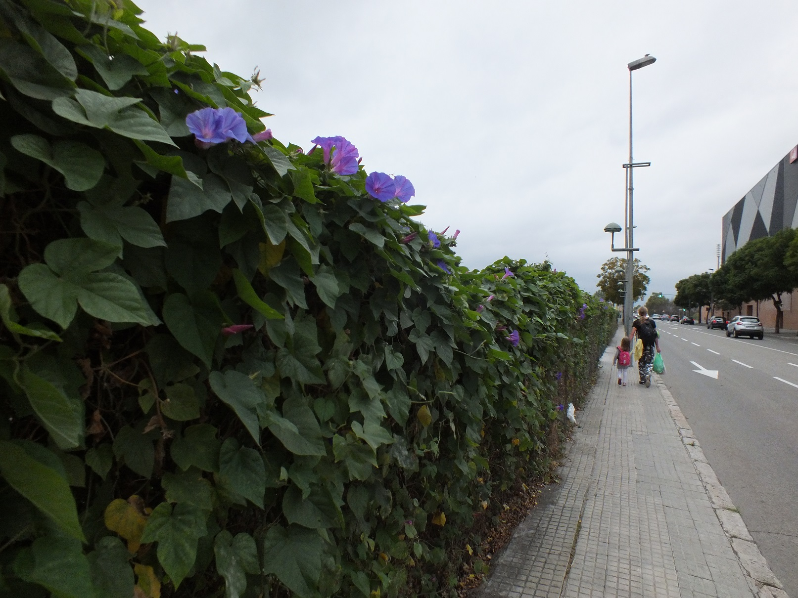 Tarragona road to necropolis