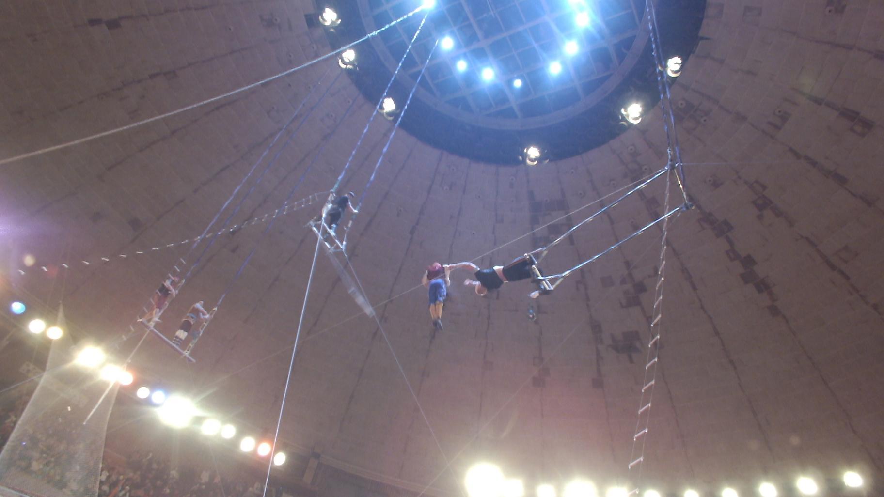 Экстремальная зима в цирке Баку