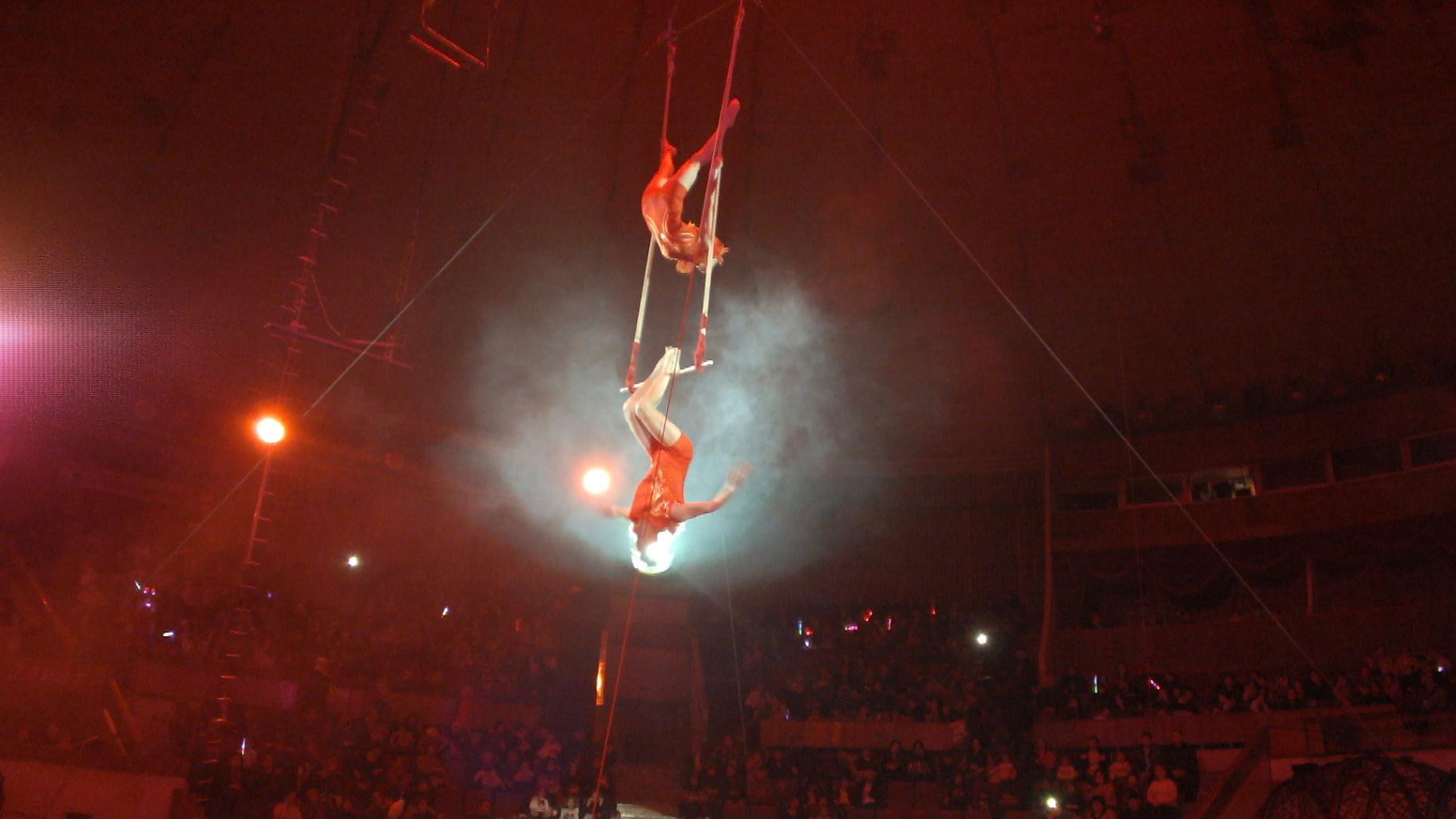 Воздушные гимнасты в цирке Баку