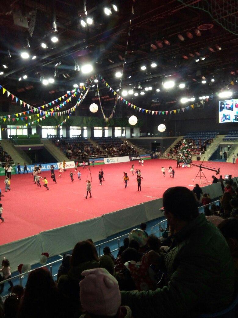 Дворец ручных видов спорта